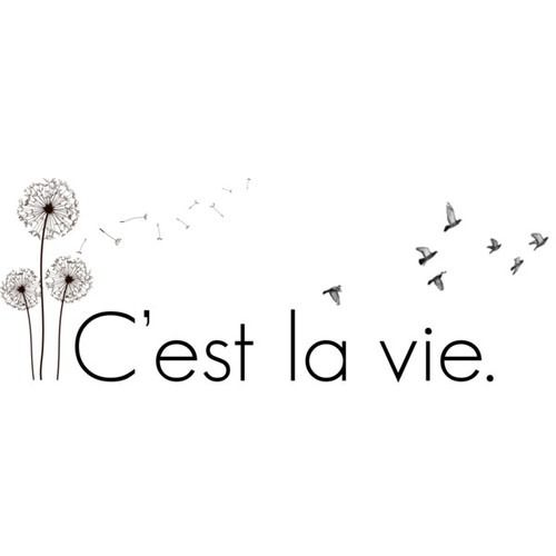 c'est la vie Pinterest